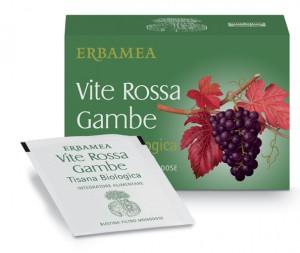 Vite_Rossa_Gambe_Tisana